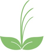tankchai logo favicon